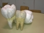 Οδοντοτεχνίας